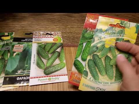 Вопрос: Какие огурцы лучше посадить в 2020 г, какой сорт вкусные, урожайные?