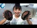 Cứ tưởng nhặt về vỏ sò, cô gái sốc khi biết thứ mang về thực sự là gì