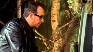 "Elvis Costello: ""Fallen"""