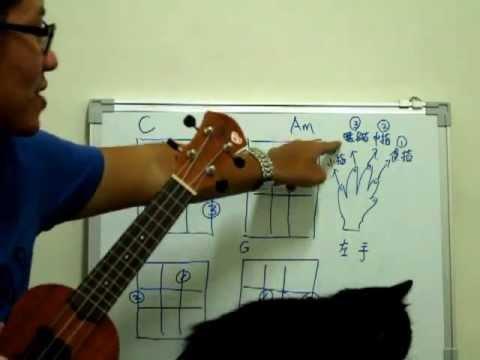基礎教學06. 學會看和弦譜及換和弦的小技巧(C Am F G)【Y WIN SONG烏克麗麗Ukulele】