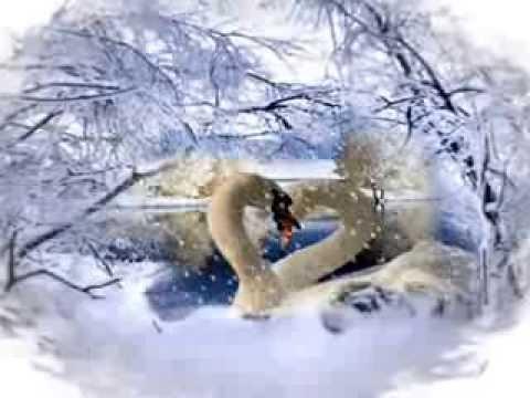 Валерий Ободзинский. Белые крылья.