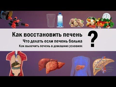 Как восстановить печень? | Как вылечить печень? | здоровая печень и печень алкоголика