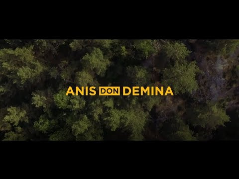 Anis Don Demina - On My Mind (Official Music Video)