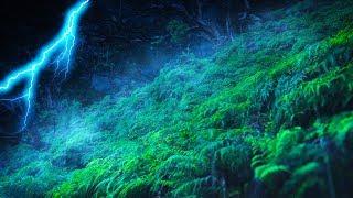 Tropical Thunderstorm with Rain Sounds White Noise | Sleep, Study, Focus | 10 Hours thumbnail