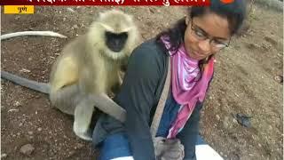 पाहा या मुलीची, उच्छादी माकडाला पकडण्याची गांधीगिरी