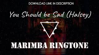 Set this latest marimba remix of you should be sad (halsey) as ringtone for your iphone. click the link to download: https://apple.co/2te6zkj download and en...
