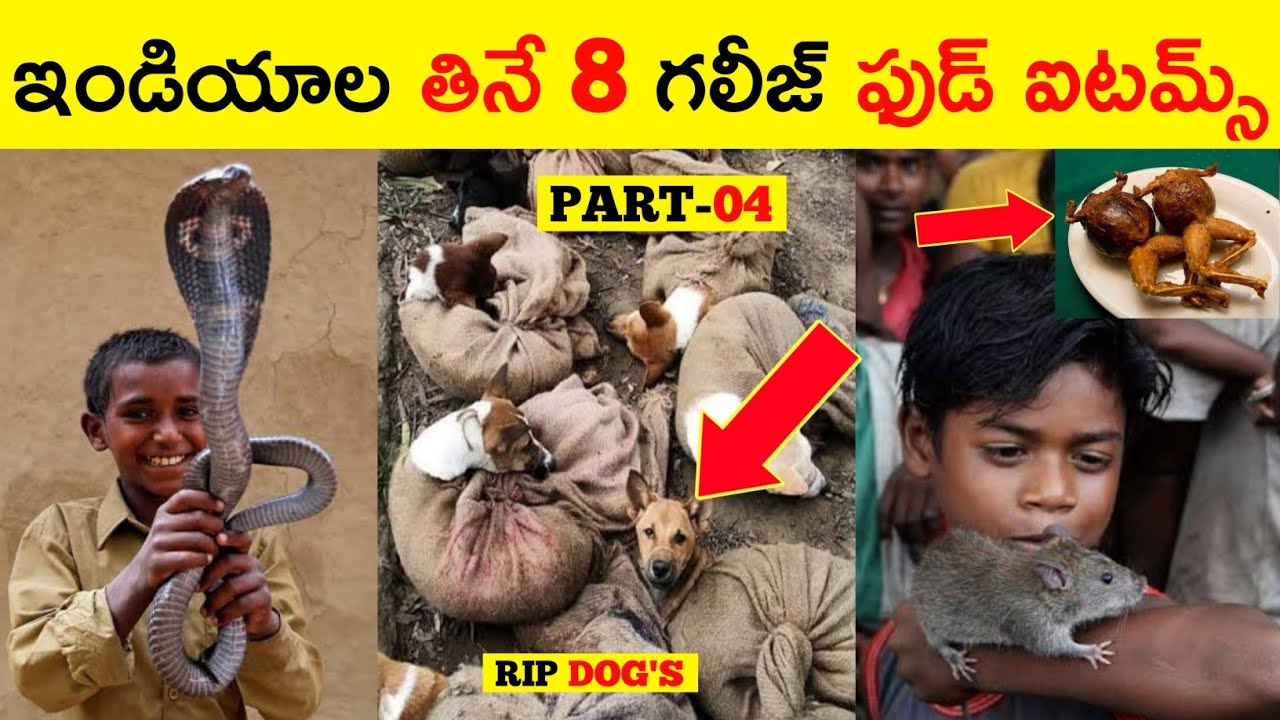 TOP 8 WORST FOODS IN INDIA | MOST UNUSUAL FOODS IN INDIA TELUGU | WEIRD FOOD ITEMS IN INDIA BY MADHU