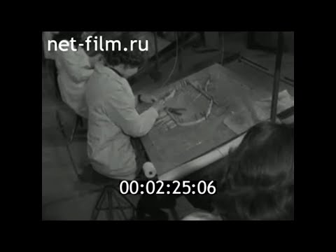 1979г.  Рассказово. завод низковольтной аппаратуры. Тамбовская обл