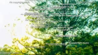 no copyright music download free, no copyright music download free mp3, relaxing music no copyright