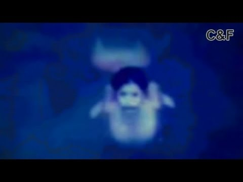 Mermaids Caught on Tape (Amazing Footage!!) HD - YouTube