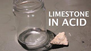 Dissolving Limestone Rocks in Hydrochloric Acid (Fossils)