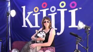 Siberian Husky, Kiya - June 9, 2013
