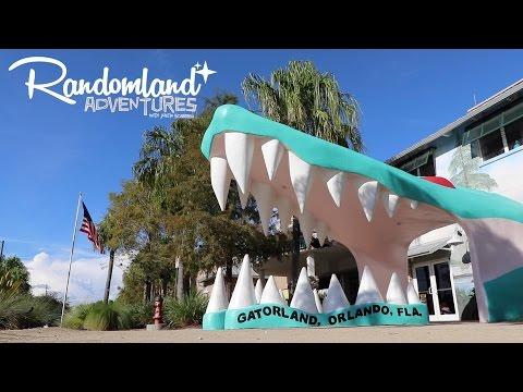 Feeding Indiana Jones' Alligators at Gatorland!
