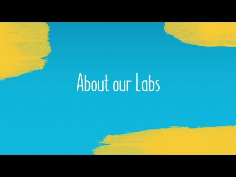 About our Labs: MindTap for IT, Networking and Security