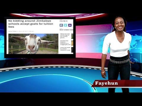 Zimbabwe Schools Take Goats As School Fees, Banks Take Chicken