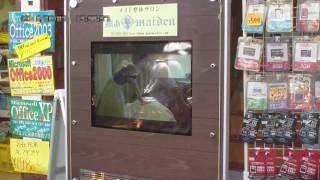 2010年8月7日に撮影した、秋葉原、「癒あmaiden」モニター付き新看板です。