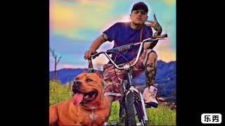 Ven (COJO CRAZY ft.EL GUAJIRO)audio oficial