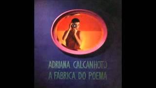 Adriana Calcanhoto - O verme e a estrela