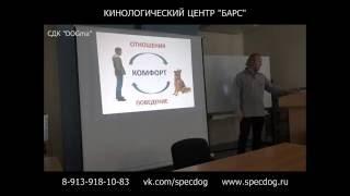 Лекция по дрессировки собак в Новосибирске. Кинолог. Вводно - теоретическое занятие по СДК