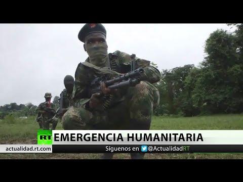 Colombia: Declaran emergencia humanitaria por enfrentamientos entre ELN y EPL