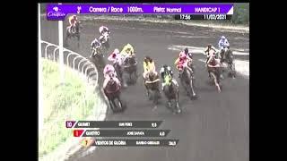 Vidéo de la course PMU PREMIO IDEA FIJA
