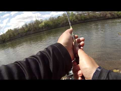 Fishing For Striped Bass And Channel Catfish On The Tidal Schuylkill River (Philadelphia, PA)