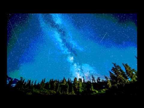 Sensifeel - The World Is Magic