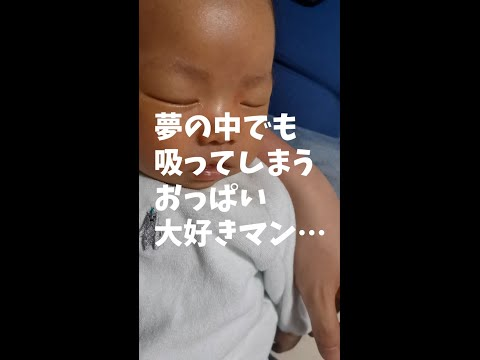 S62.2.17 週プレイボーイ 宝生桜子 織田真由美 鳥居かほり(その他