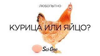 Что было в начале: курица или яйцо?