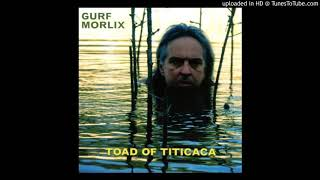 Gurf Morlix - Fallin' Off the Face of the World