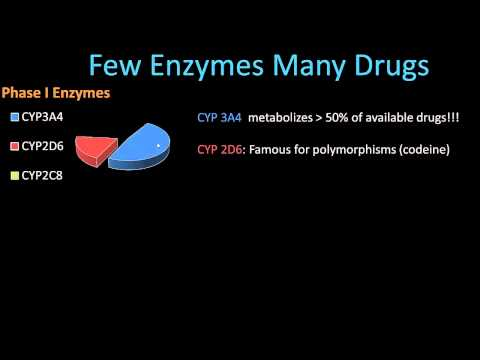 Phase II Metabolism - Pharmacology Lect 8