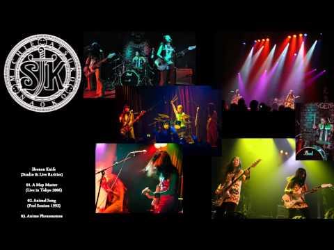 Shonen Knife - Studio & Live Rarities (71+2 songs - Slideshow)(DHV 2011)