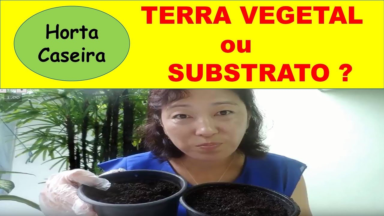 Devo usar Terra Vegetal ou Subtrato na minha Horta caseira?