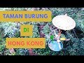 Taman Burung Di Hong Kong Hong Kong Park Zoological And Botanical Part   Mp3 - Mp4 Download