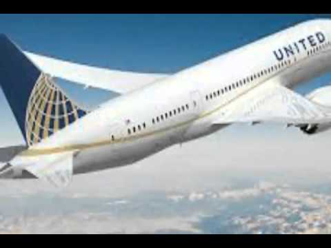 United Airlines will use Animal Poop to Power its Jets