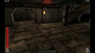 Rune Multiplayer - random pub