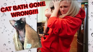 GAVE MY HAIRLESS CAT A BATH AGAIN | CAT BATH | CAT ATTACK| SPHYNX CAT BATH | FUNNY | ABS AND KANDY