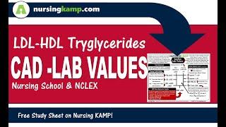 Cardiac CAD Cardiovascular Labs CRP Nursing KAMP  NVC21