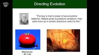 Evolving Biotechnology at Victoria University of Wellington. Presented by Professor David Ackerley