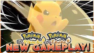 Brand new pokemon
