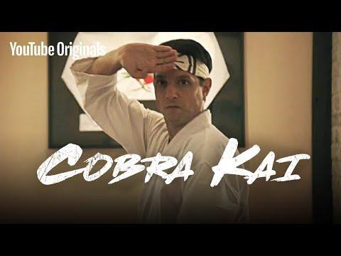 Cobra Kai Official Teaser Trailer #3 (Karate Kid) - Sensei Daniel