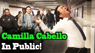 CAMILA CABELLO - Never be the Same - SINGING IN PUBLIC!!