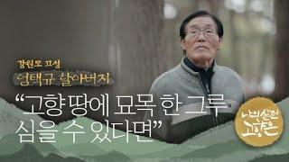"""[이산70년기획]⑭ """"금강산에서 봤던 적송 묘목 한 그…"""