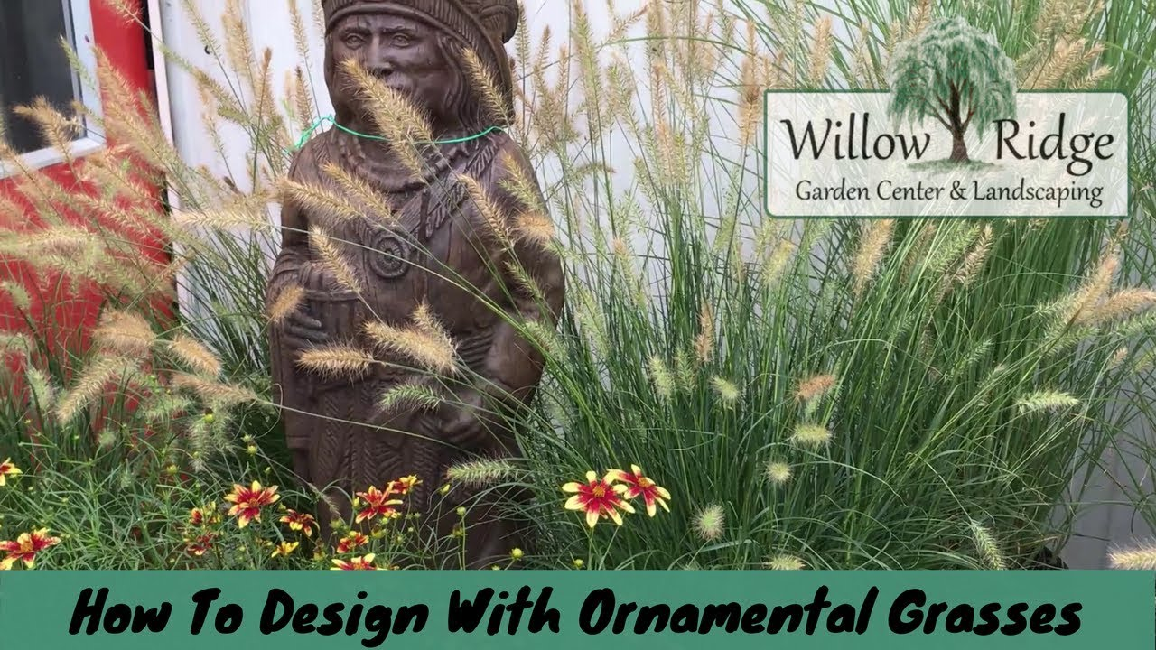 How To Design With Ornamental Grasses Youtube
