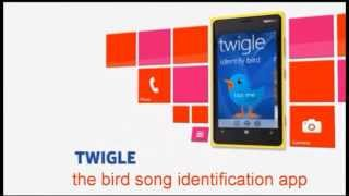 Twigle Birds – A Field Guide to Identify Bird Songs, Sounds, and Calls on Windows Phone