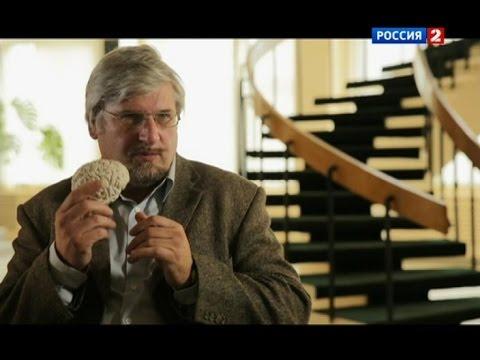 С.В. Савельев про влияние интернета на человека.