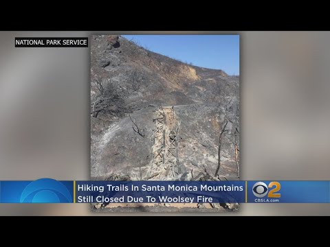 Fire-Scorched Santa Monica Mountains Won't Be Ready For Visitors Any Time Soon