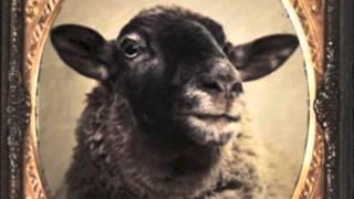 Baa Baa Black Sheep - Indie Children