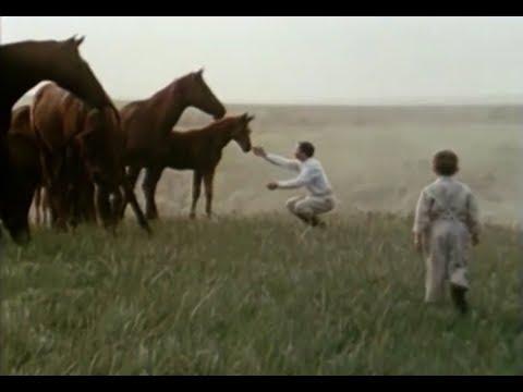«Наследница Ники», Одесская киностудия, 1988