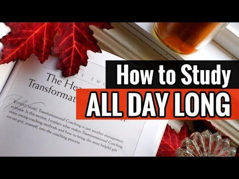 How to Study All Day
